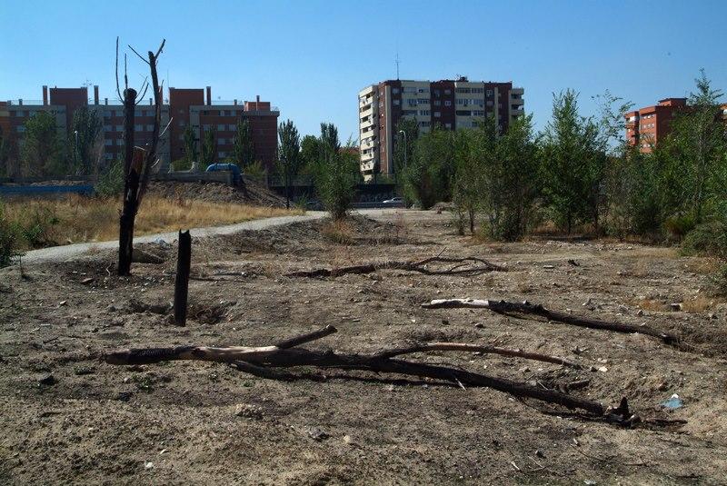 AVIB denuncia el estado de abandono del segundo tramo del Parque Lineal del Manzanares