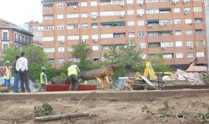 """El Ayuntamiento comete un nuevo """"arboricidio"""" con las obras el mercado provisional de Barceló"""