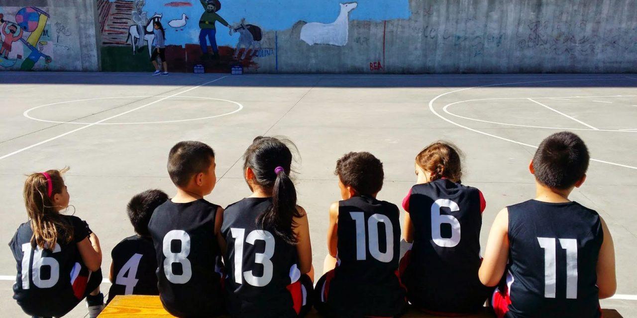 El Club de Baloncesto de San Fermín entrenará en la Caja Mágica a partir de septiembre