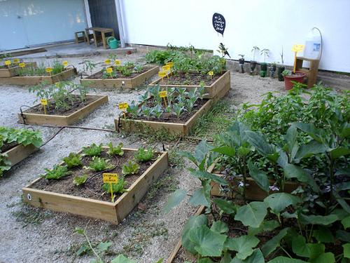 El I Congreso de agricultura urbana hace un llamamiento a incorporar los huertos y parques agrícolas en la planificación de nuestras ciudades