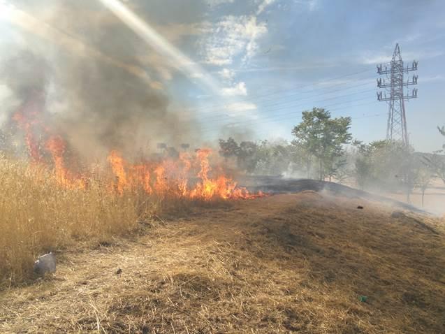 El Parque Manolito Gafotas de Carabanchel sufre el segundo incendio en un mes