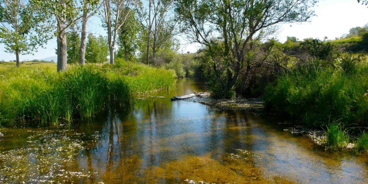 El campo de golf de Tres Cantos amenaza el equilibrio hídrico del municipio