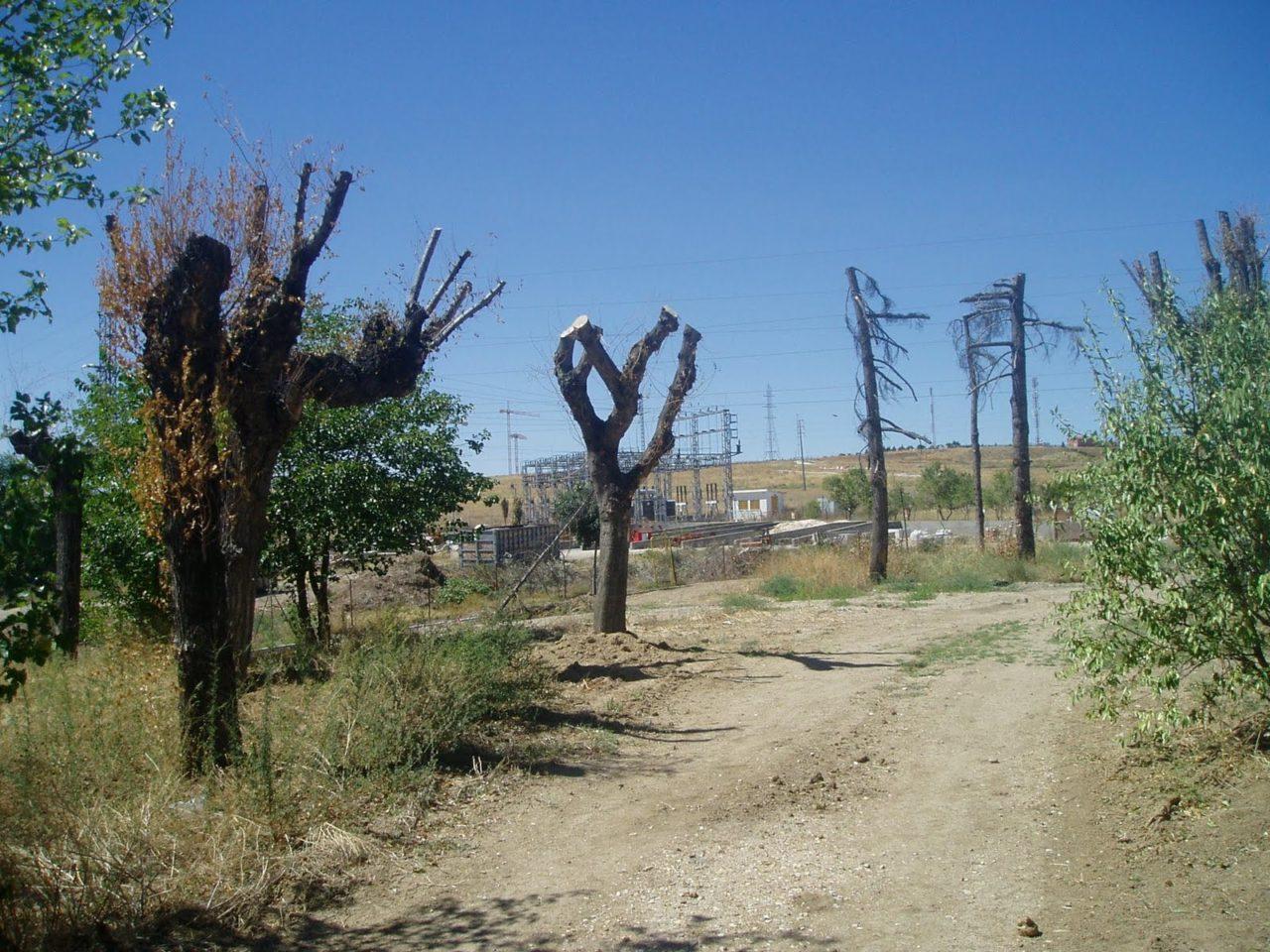 El parque de La Alhóndiga, pasto del abandono municipal