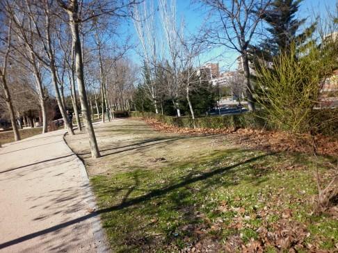 El vecindario de Hortaleza denuncia el estado de abandono del parque de Villa Rosa