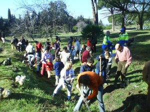La Coordinadora Salvemos la Dehesa de la Villa organiza la XV plantación de árboles en defensa del parque
