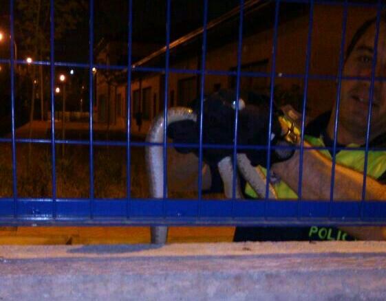 La asociación vecinal de Butarque exige al Ayuntamiento que extreme el mantenimiento del barrio