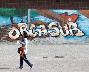 La dificultad de tener movilidad reducida en Orcasur