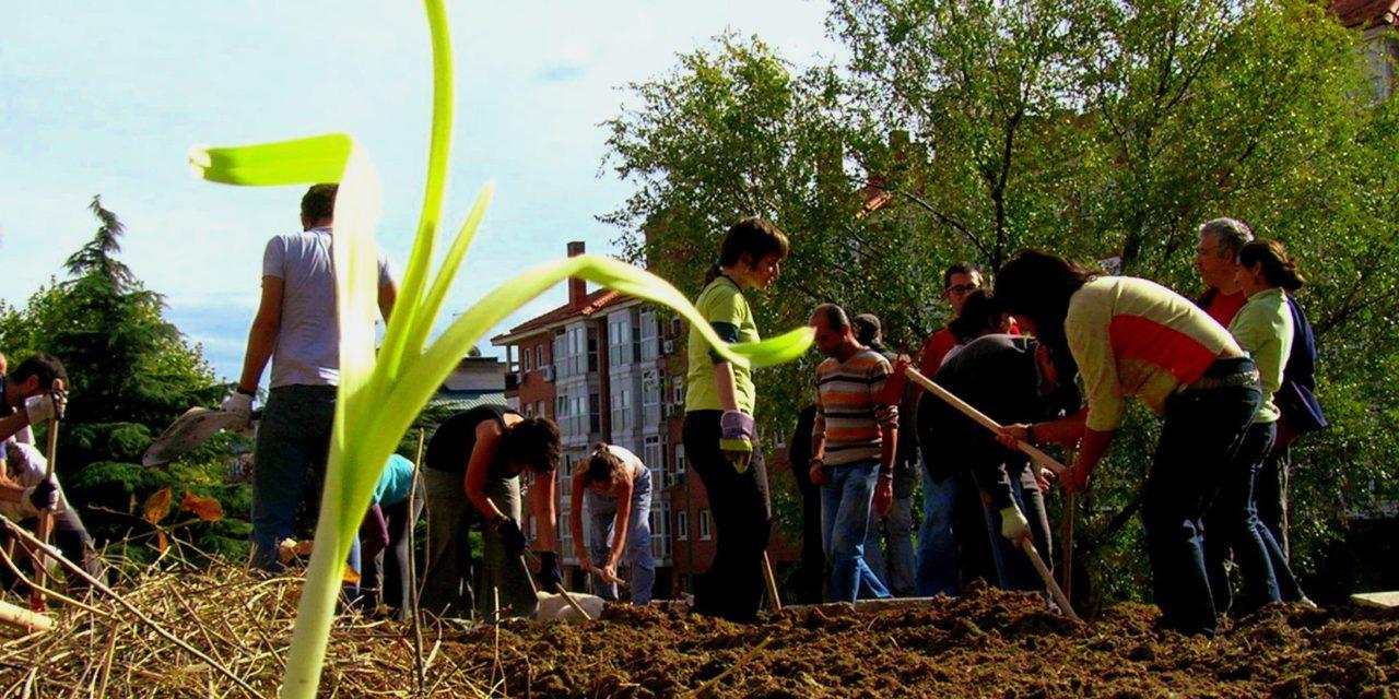 """La horticultura urbana madrileña llega a La Casa Encendida con la exposición """"Plantando redes"""""""