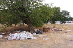 San Fermín exige soluciones urgentes a la falta de limpieza del barrio y al abandono de sus zonas verdes