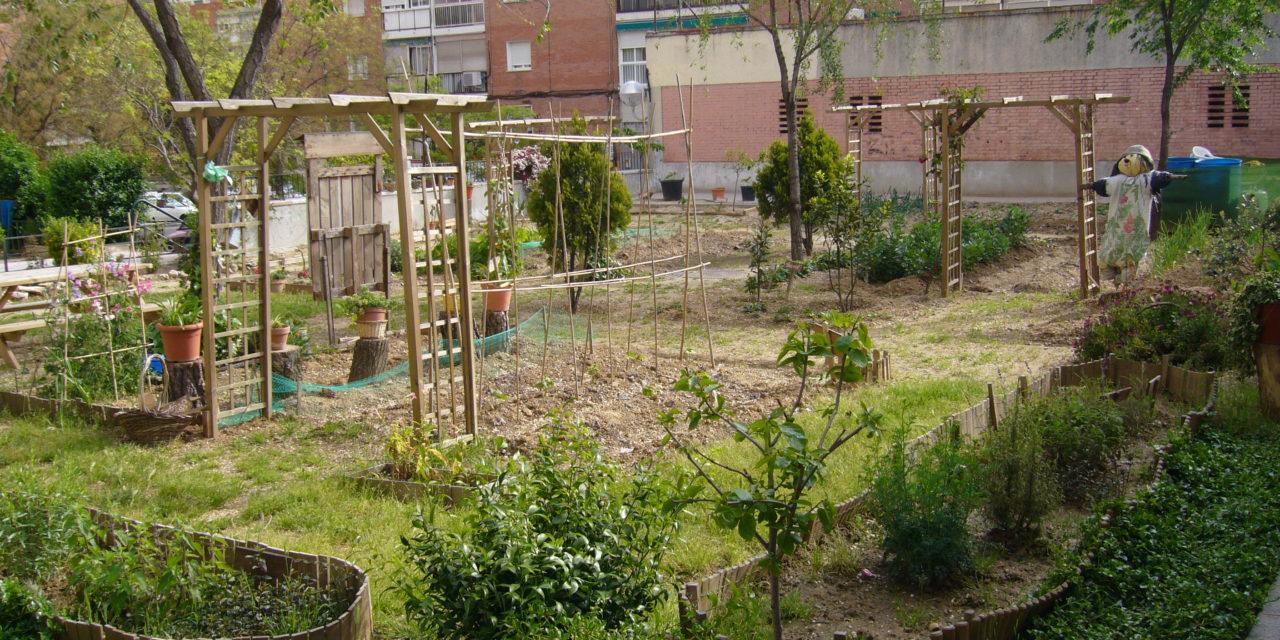 Un archipiélago verde crece en Madrid: la red de huertos urbanos comunitarios