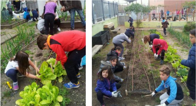 Proyecto PB Palomeras: Escuela medioambiental