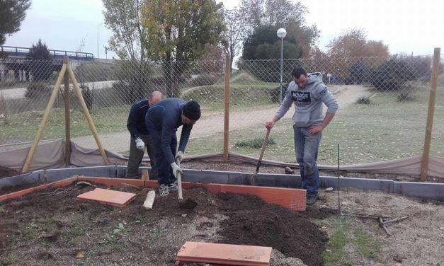 El vecindario de Butarque (Villaverde) consigue la gestión de su huerto urbano