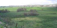 ¿Qué se esconde detrás de la ubicación del Canal de Remo para Madrid 2016 en el Parque Lineal del Manzanares?