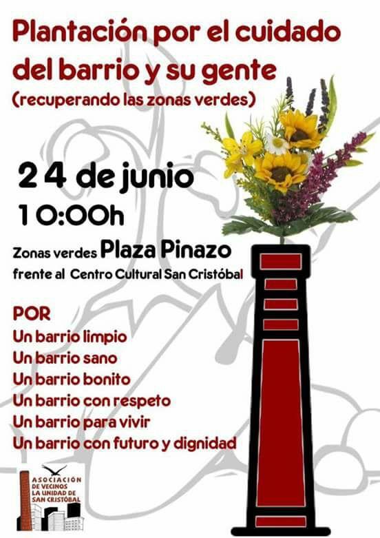Plantación Plaza de los Pinazo,