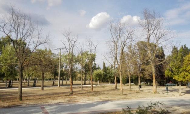 La muerte silenciosa del Parque de Las Cruces (Carabanchel)