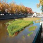 AAVV de Arganzuela, Carabanchel y Usera reclaman la apertura de la compuerta 9 del Manzanares