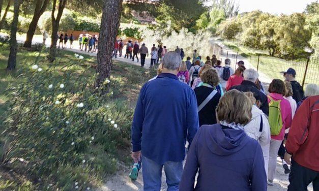 Un centenar de personas marchan en defensa del Monte del Pilar de Majadahonda