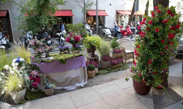 """La Junta de Fuencarral impide la celebración de un Park (ing) Day vecinal porque la actividad """"no se encuentra entre las programadas"""" por el Ayuntamiento"""