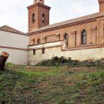 El Ayuntamiento autoriza la tala de casi un centenar de árboles en Hortaleza para un gimnasio sin licencia de obras